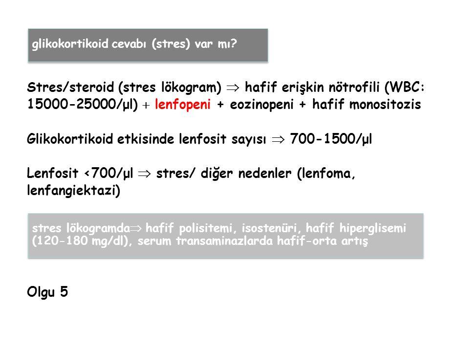 Stres/steroid (stres lökogram)  hafif erişkin nötrofili (WBC: 15000-25000/μl)  lenfopeni + eozinopeni + hafif monositozis Glikokortikoid etkisinde lenfosit sayısı  700-1500/μl Lenfosit <700/μl  stres/ diğer nedenler (lenfoma, lenfangiektazi) Olgu 5 stres lökogramda  hafif polisitemi, isostenüri, hafif hiperglisemi (120-180 mg/dl), serum transaminazlarda hafif-orta artış glikokortikoid cevabı (stres) var mı?
