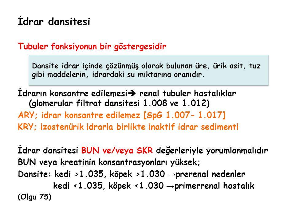 İdrar dansitesi Tubuler fonksiyonun bir göstergesidir İdrarın konsantre edilemesi  renal tubuler hastalıklar (glomerular filtrat dansitesi 1.008 ve 1