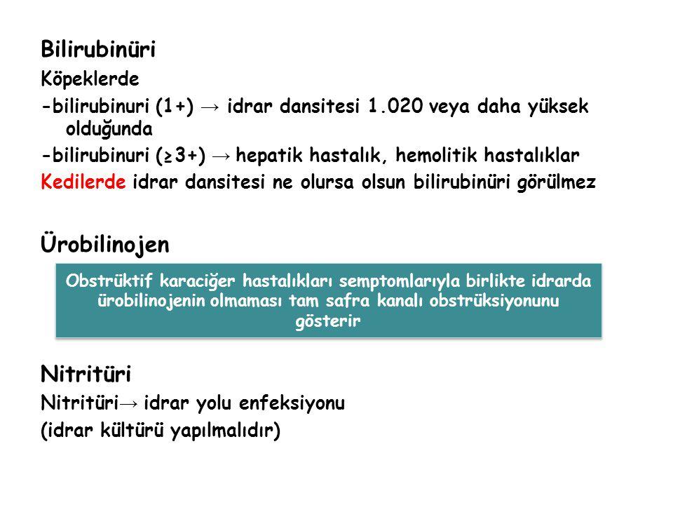 Bilirubinüri Köpeklerde -bilirubinuri (1+) → idrar dansitesi 1.020 veya daha yüksek olduğunda -bilirubinuri (≥3+) → hepatik hastalık, hemolitik hastalıklar Kedilerde idrar dansitesi ne olursa olsun bilirubinüri görülmez Ürobilinojen Nitritüri Nitritüri → idrar yolu enfeksiyonu (idrar kültürü yapılmalıdır) Obstrüktif karaciğer hastalıkları semptomlarıyla birlikte idrarda ürobilinojenin olmaması tam safra kanalı obstrüksiyonunu gösterir Obstrüktif karaciğer hastalıkları semptomlarıyla birlikte idrarda ürobilinojenin olmaması tam safra kanalı obstrüksiyonunu gösterir
