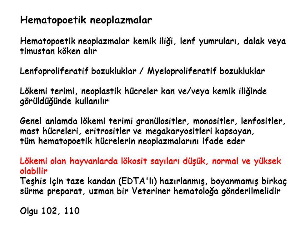Hematopoetik neoplazmalar Hematopoetik neoplazmalar kemik iliği, lenf yumruları, dalak veya timustan köken alır Lenfoproliferatif bozukluklar / Myelop
