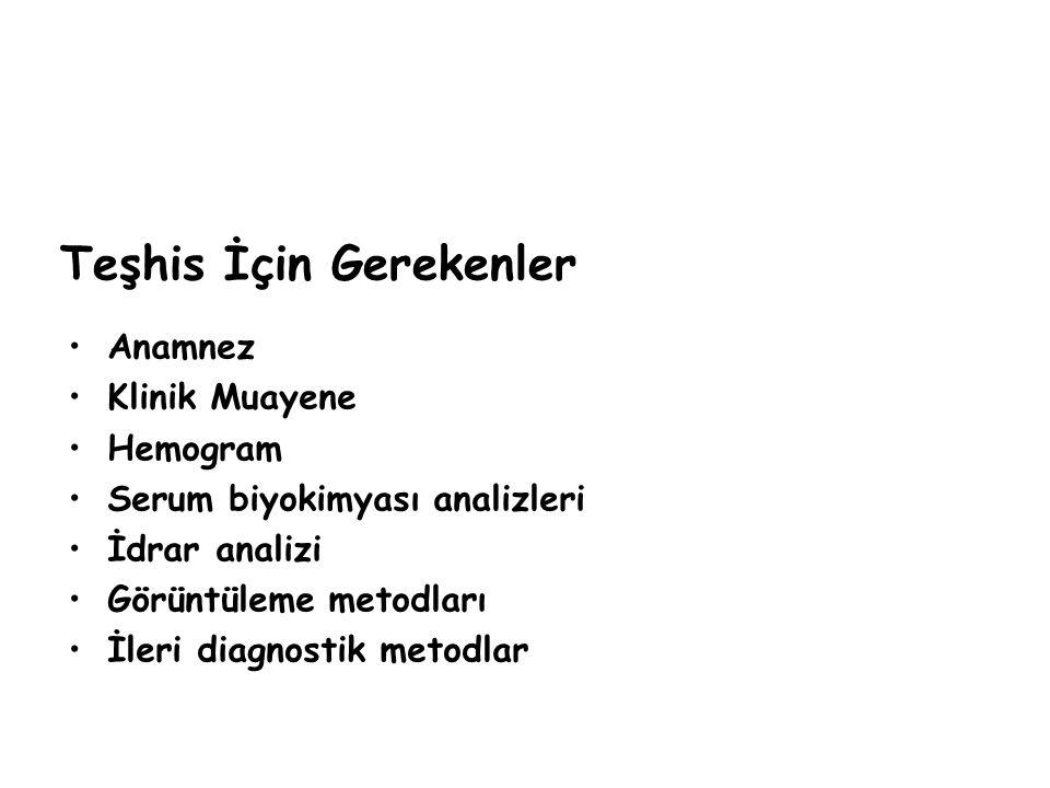 Fotoğraftaki eritrosit morfolojisini değerlendiriniz (2).