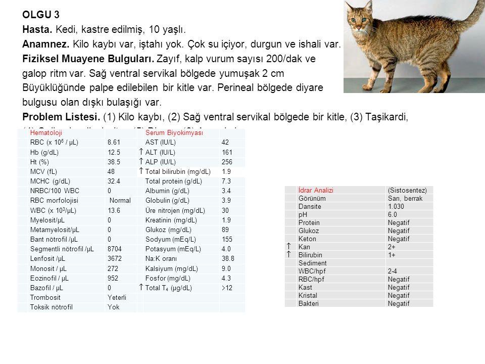 OLGU 3 Hasta. Kedi, kastre edilmiş, 10 yaşlı. Anamnez. Kilo kaybı var, iştahı yok. Çok su içiyor, durgun ve ishali var. Fiziksel Muayene Bulguları. Za