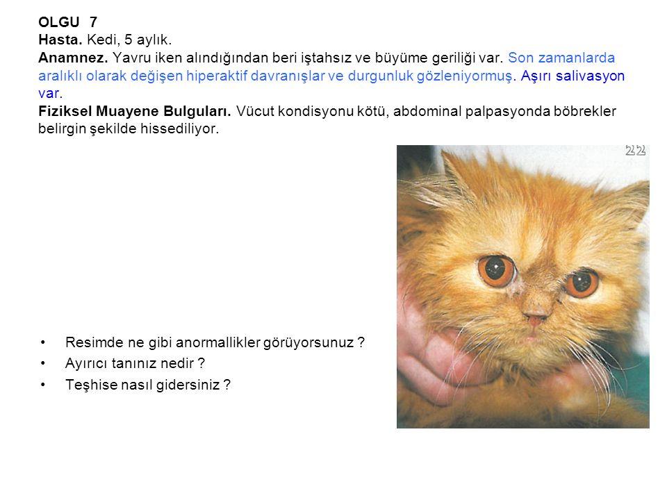 OLGU 7 Hasta.Kedi, 5 aylık. Anamnez. Yavru iken alındığından beri iştahsız ve büyüme geriliği var.