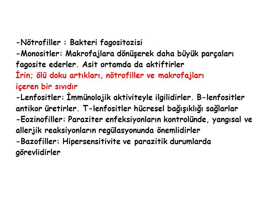 Glikozüri Normal idrarda glikoz bulunmaz.