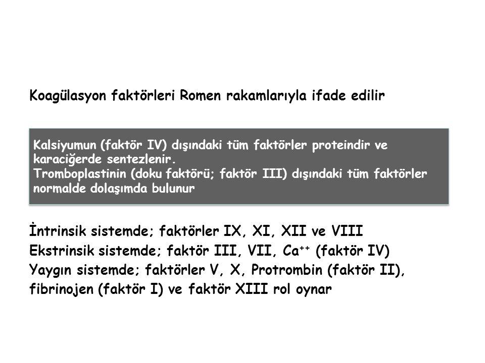 Koagülasyon faktörleri Romen rakamlarıyla ifade edilir İntrinsik sistemde; faktörler IX, XI, XII ve VIII Ekstrinsik sistemde; faktör III, VII, Ca ++ (