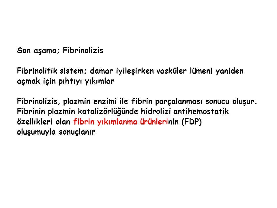 Son aşama; Fibrinolizis Fibrinolitik sistem; damar iyileşirken vasküler lümeni yaniden açmak için pıhtıyı yıkımlar Fibrinolizis, plazmin enzimi ile fi