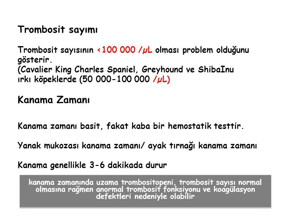 Trombosit sayımı Trombosit sayısının <100 000 /µL olması problem olduğunu gösterir. (Cavalier King Charles Spaniel, Greyhound ve ShibaInu ırkı köpekle