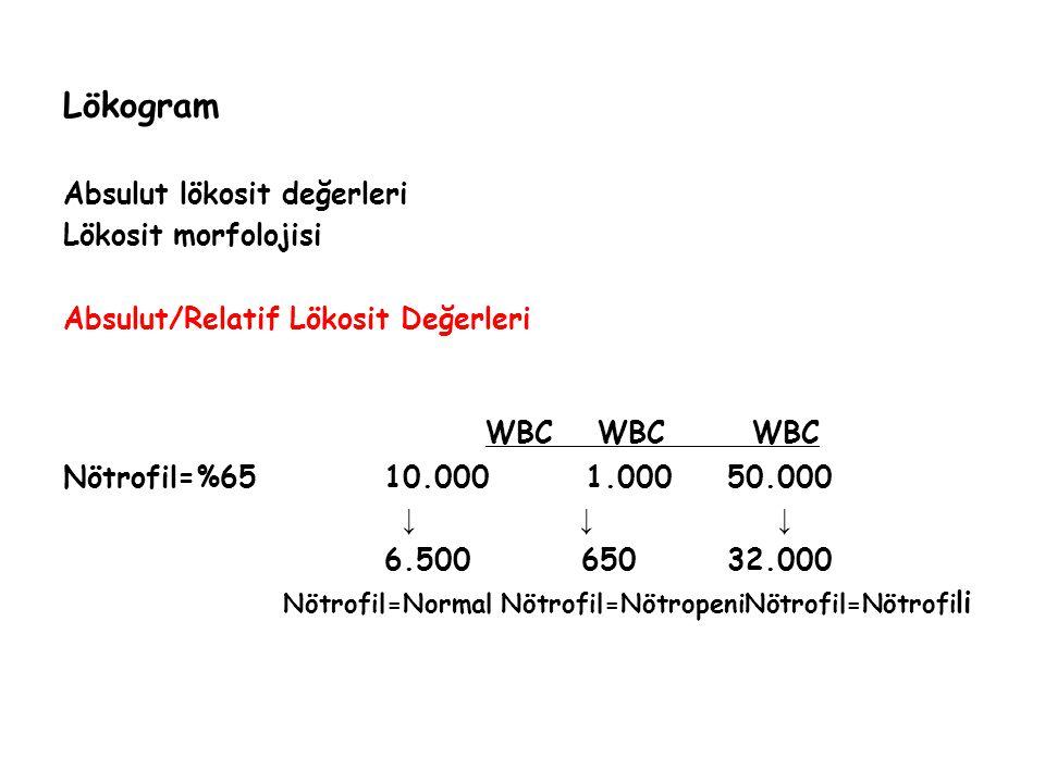 Lökogram Absulut lökosit değerleri Lökosit morfolojisi Absulut/Relatif Lökosit Değerleri WBC WBC WBC Nötrofil=%65 10.0001.000 50.000 ↓ ↓ ↓ 6.500 650 3