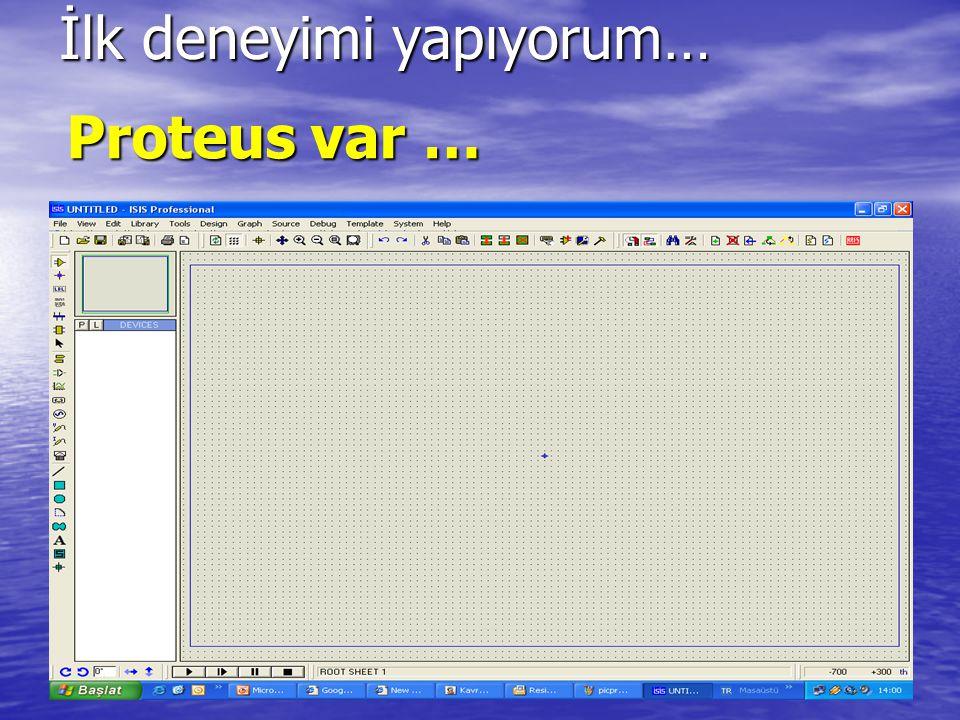 Proteus var …