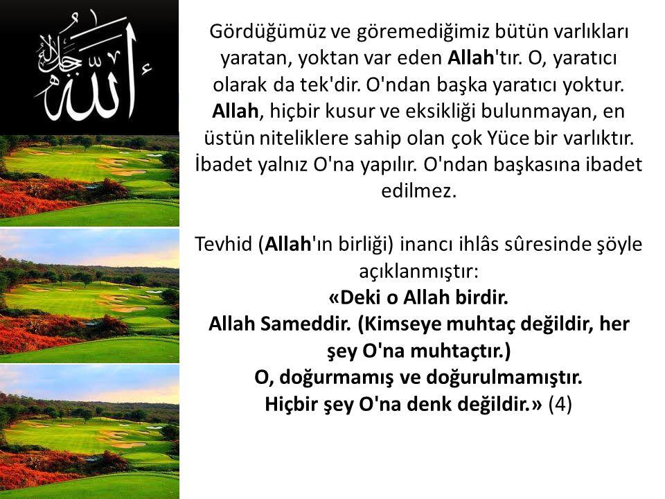 Gördüğümüz ve göremediğimiz bütün varlıkları yaratan, yoktan var eden Allah tır.
