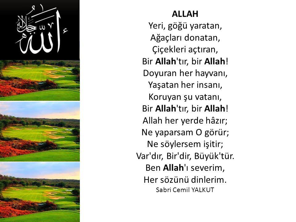 ALLAH Yeri, göğü yaratan, Ağaçları donatan, Çiçekleri açtıran, Bir Allah tır, bir Allah.