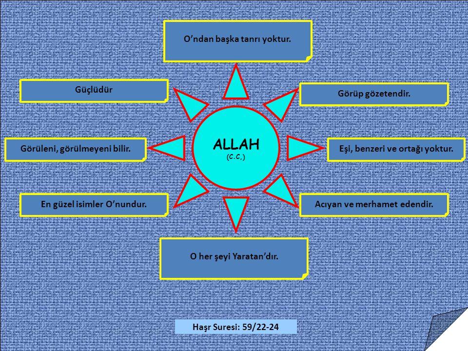 ALLAH (C.C,) O her şeyi Yaratan'dır.O'ndan başka tanrı yoktur.
