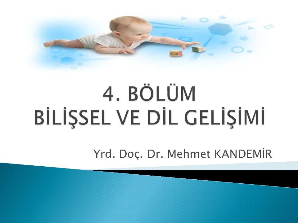 Yrd. Doç. Dr. Mehmet KANDEMİR