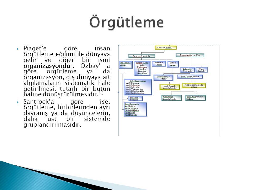  Piaget'e göre insan örgütleme eğilimi ile dünyaya gelir ve diğer bir ismi organizasyondur. Özbay' a göre örgütleme ya da organizasyon, dış dünyaya a