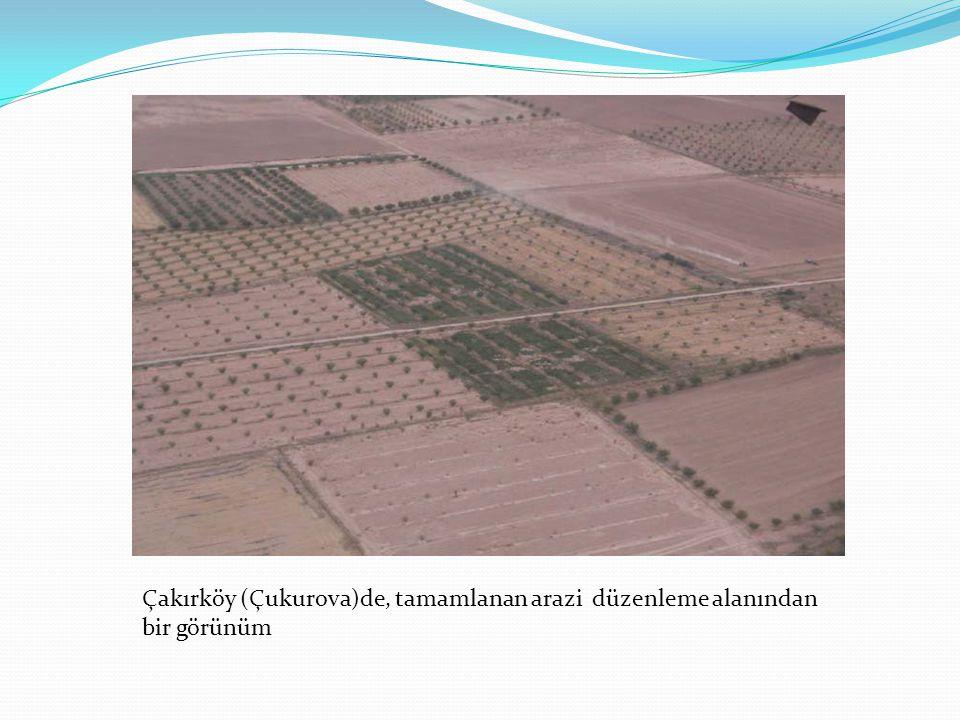 Çakırköy (Çukurova)de, tamamlanan arazi düzenleme alanından bir görünüm