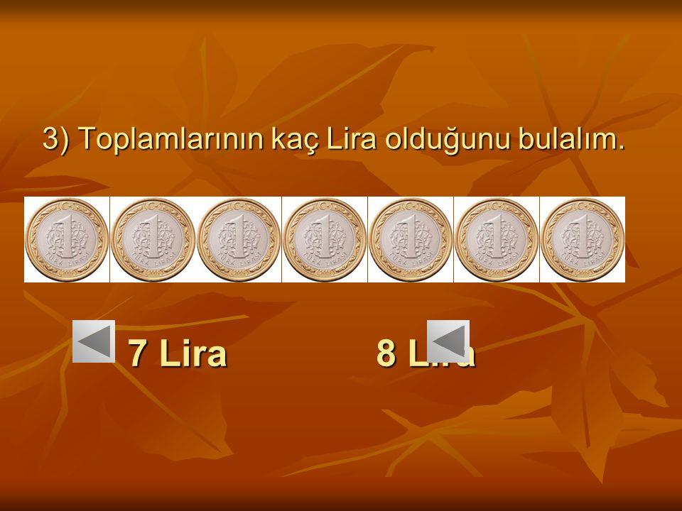 7 Lira 8 Lira 7 Lira 8 Lira 3) Toplamlarının kaç Lira olduğunu bulalım.
