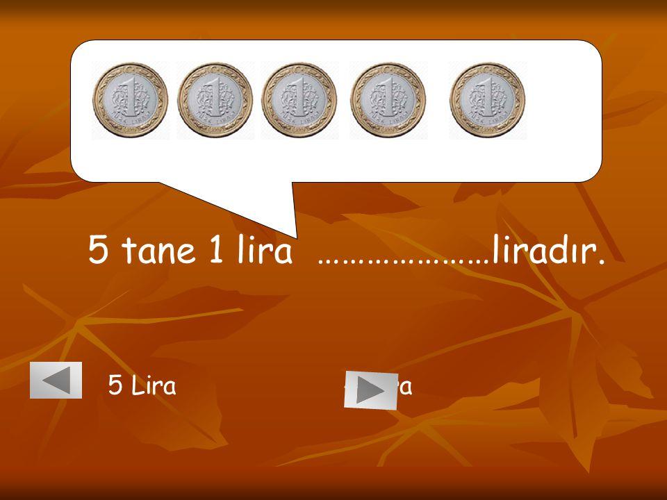 5 tane 1 lira …………………liradır. 5 Lira 4 Lira