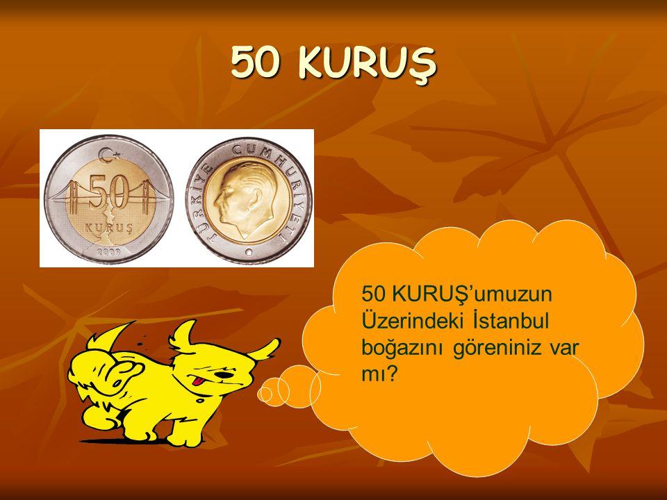 50 KURUŞ'umuzun Üzerindeki İstanbul boğazını göreniniz var mı? 50 KURUŞ