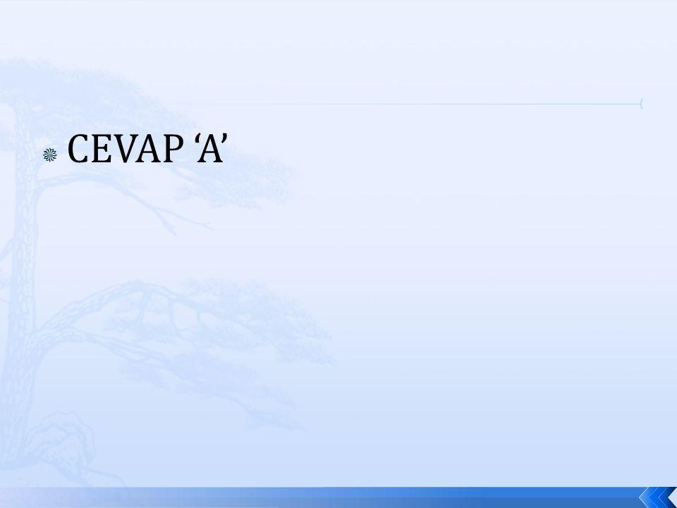  CEVAP 'A'