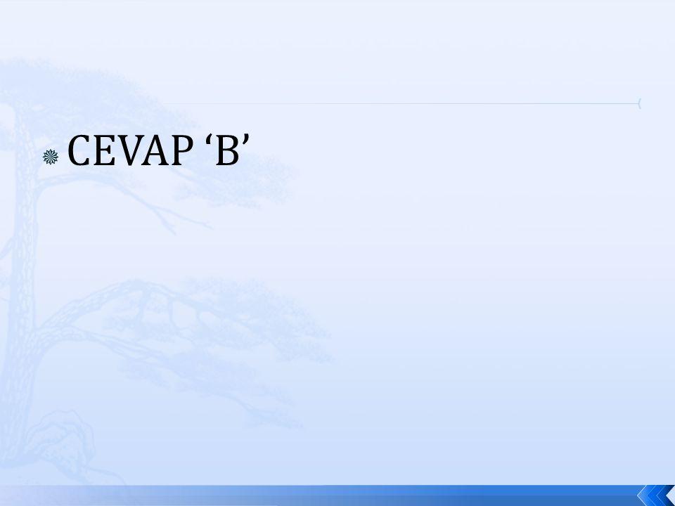  CEVAP 'B'