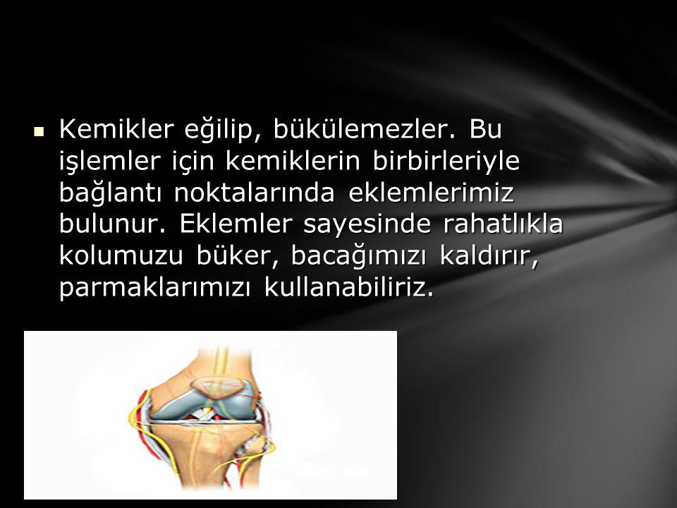  Kemikler eğilip, bükülemezler. Bu işlemler için kemiklerin birbirleriyle bağlantı noktalarında eklemlerimiz bulunur. Eklemler sayesinde rahatlıkla k