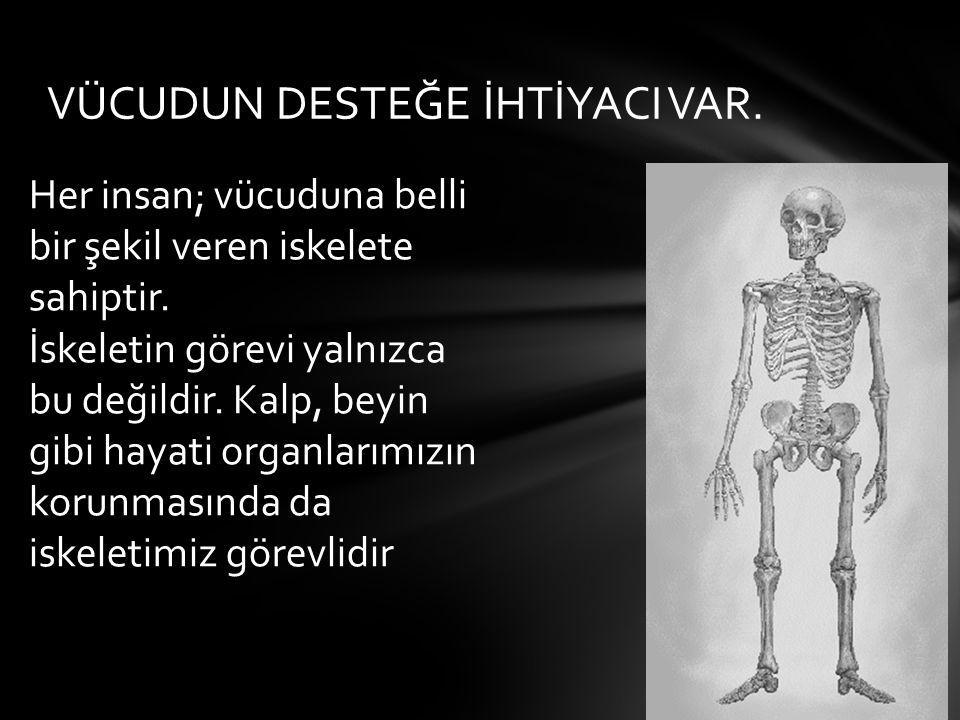 VÜCUDUN DESTEĞE İHTİYACI VAR. Her insan; vücuduna belli bir şekil veren iskelete sahiptir. İskeletin görevi yalnızca bu değildir. Kalp, beyin gibi hay
