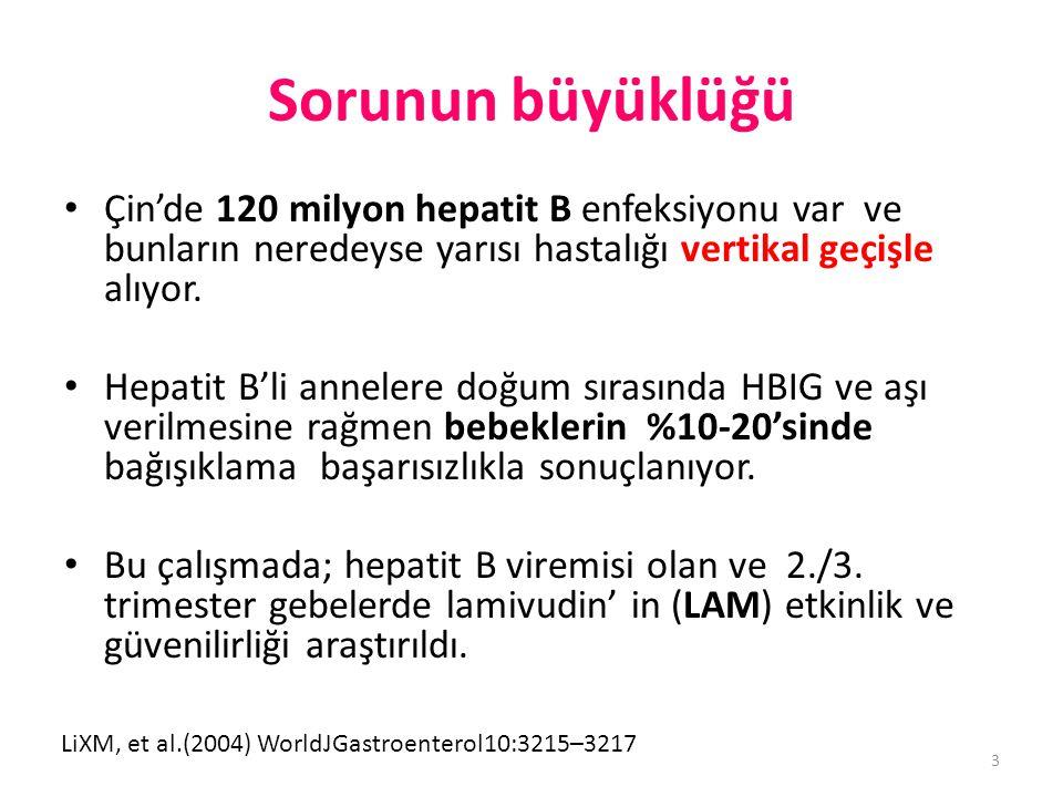Sorunun büyüklüğü • Çin'de 120 milyon hepatit B enfeksiyonu var ve bunların neredeyse yarısı hastalığı vertikal geçişle alıyor. • Hepatit B'li anneler