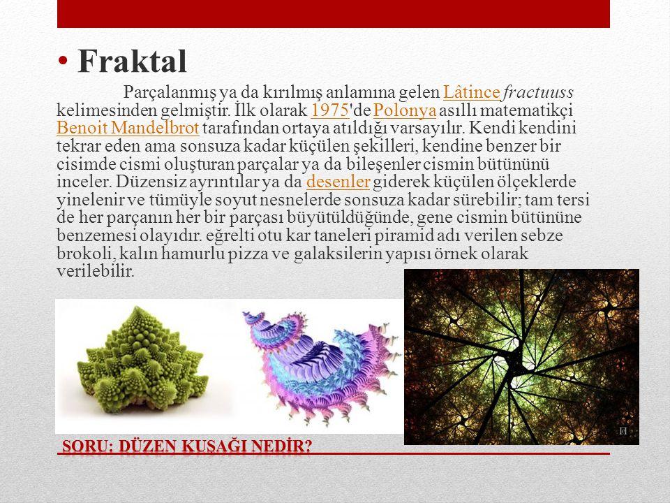 • Fraktal Parçalanmış ya da kırılmış anlamına gelen Lâtince fractuuss kelimesinden gelmiştir.
