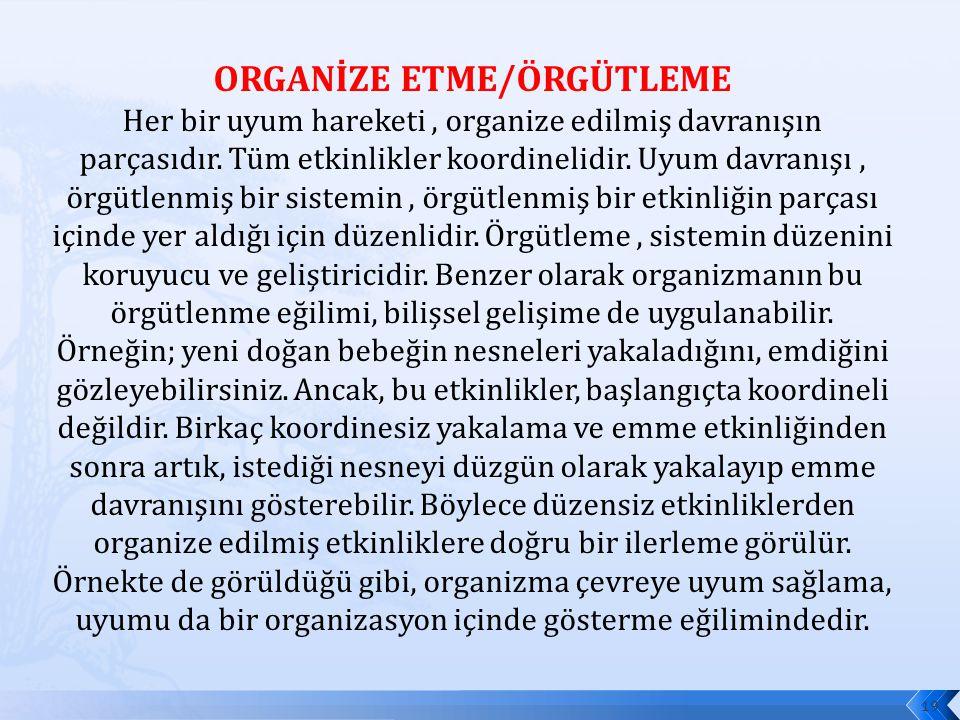 ORGANİZE ETME/ÖRGÜTLEME Her bir uyum hareketi, organize edilmiş davranışın parçasıdır. Tüm etkinlikler koordinelidir. Uyum davranışı, örgütlenmiş bir