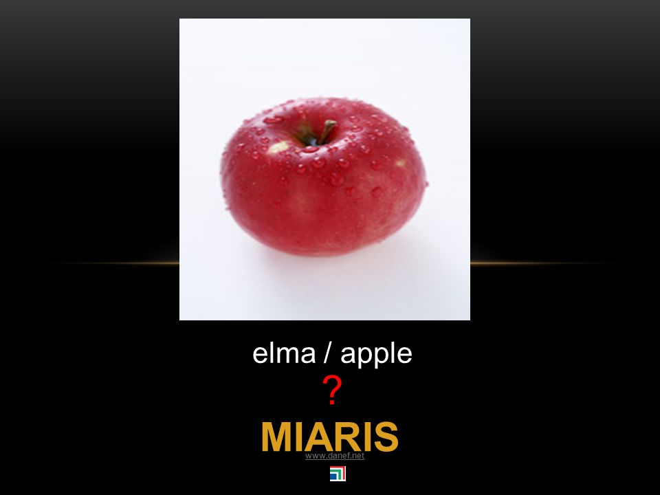 MARQO dut / mulberry