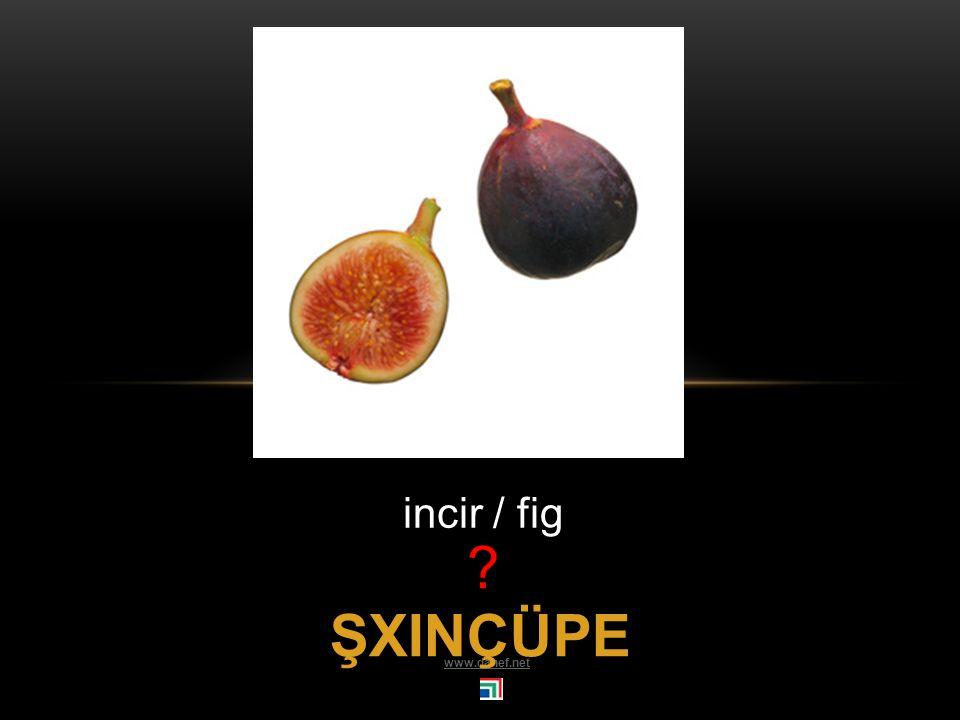 ŞINDIRĞO kiraz / cherry