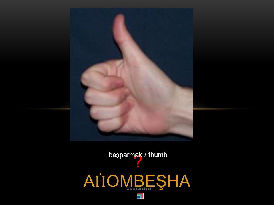 A Ḣ OAMBE parmak /finger