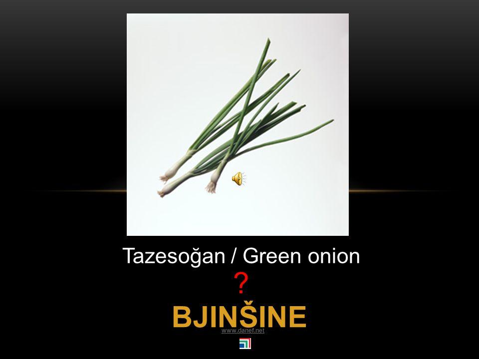 CENÇ ŠINE fasülye / String bean