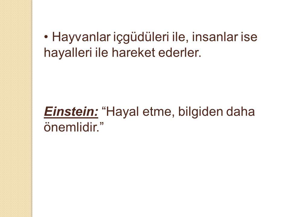 """• Hayvanlar içgüdüleri ile, insanlar ise hayalleri ile hareket ederler. Einstein: """"Hayal etme, bilgiden daha önemlidir."""""""