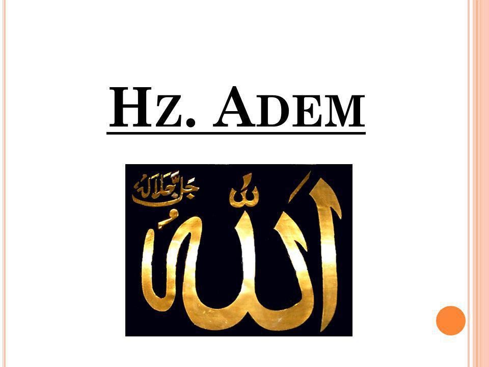 H Z. A DEM