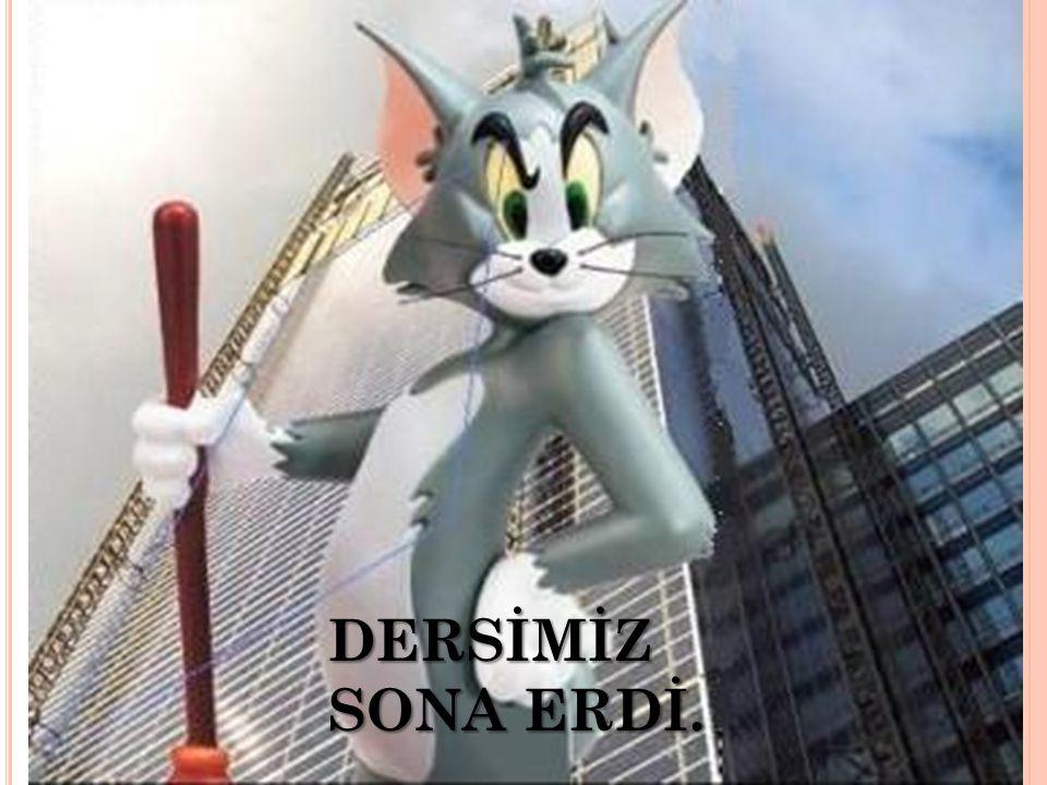 DERSİMİZ SONA ERDİ.
