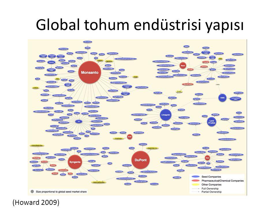 Global tohum endüstrisi yapısı (Howard 2009)