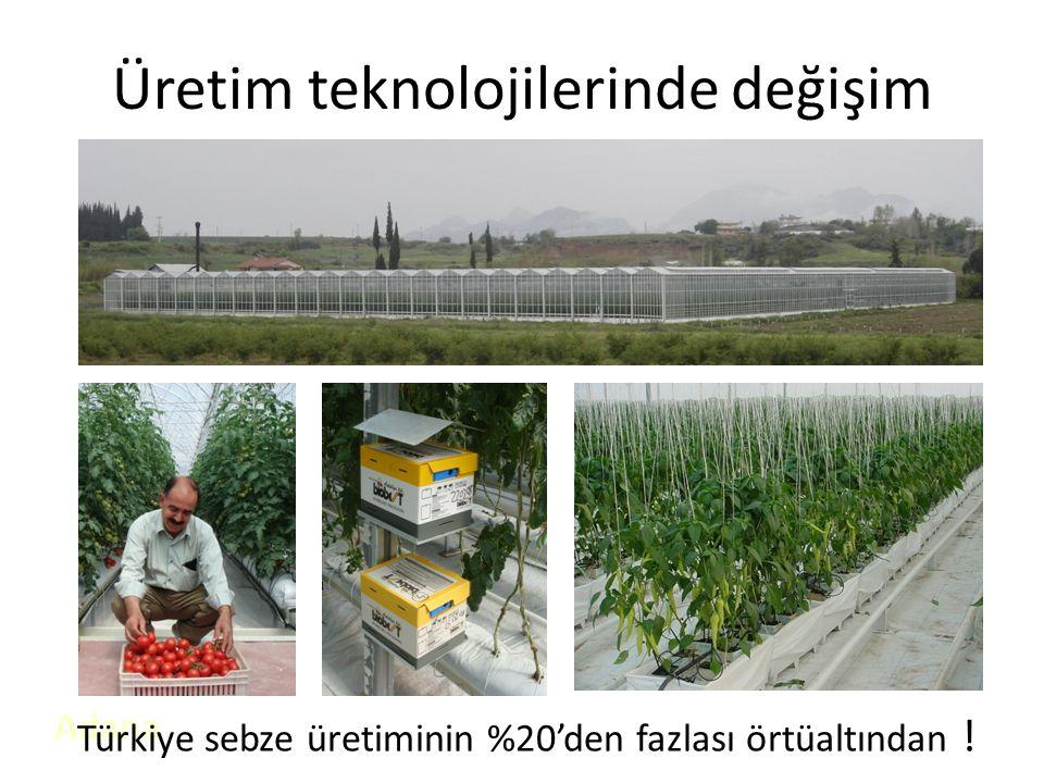 Üretim teknolojilerinde değişim Adana Türkiye sebze üretiminin %20'den fazlası örtüaltından !