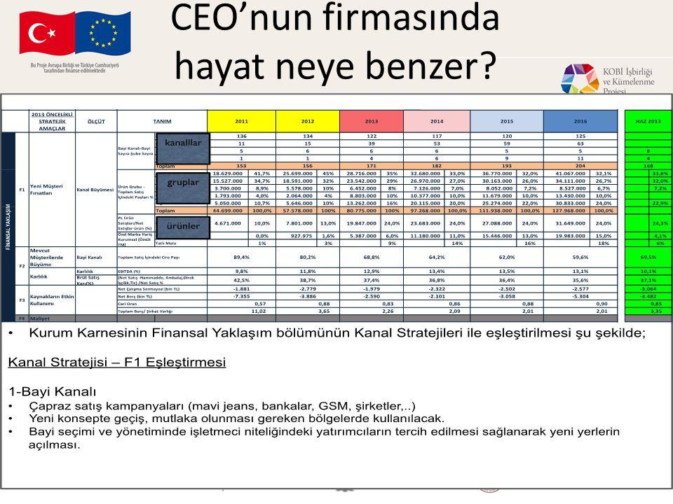 CEO'nun firmasında hayat neye benzer?