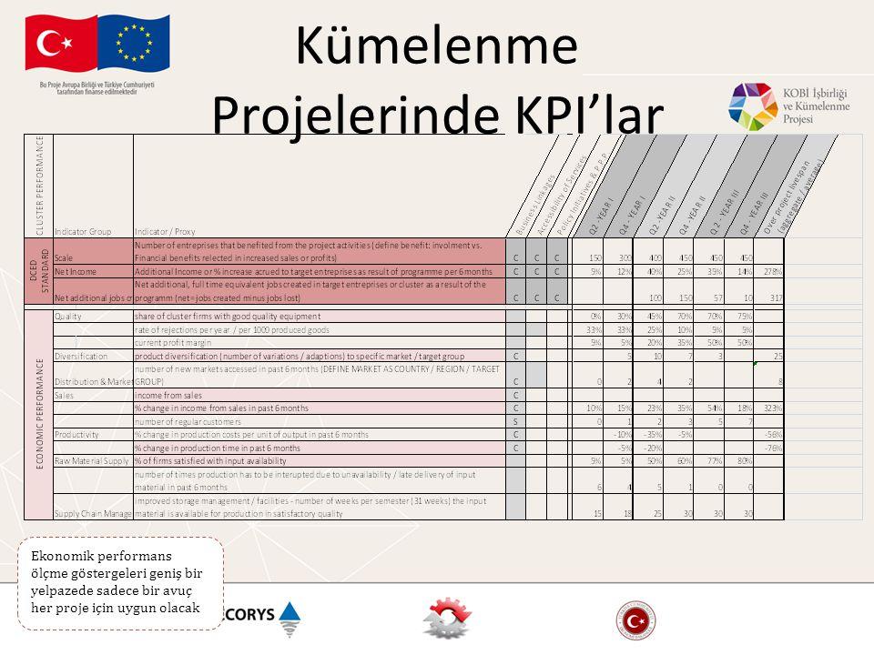 Ekonomik performans ölçme göstergeleri geniş bir yelpazede sadece bir avuç her proje için uygun olacak Kümelenme Projelerinde KPI'lar