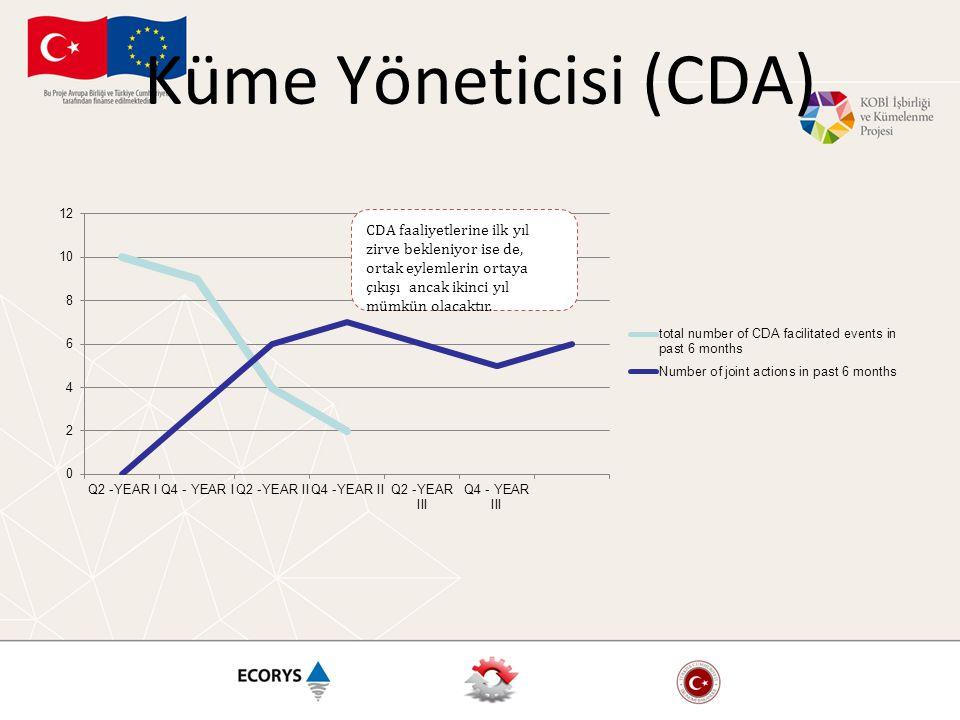 Küme Yöneticisi (CDA) CDA faaliyetlerine ilk yıl zirve bekleniyor ise de, ortak eylemlerin ortaya çıkışı ancak ikinci yıl mümkün olacaktır.