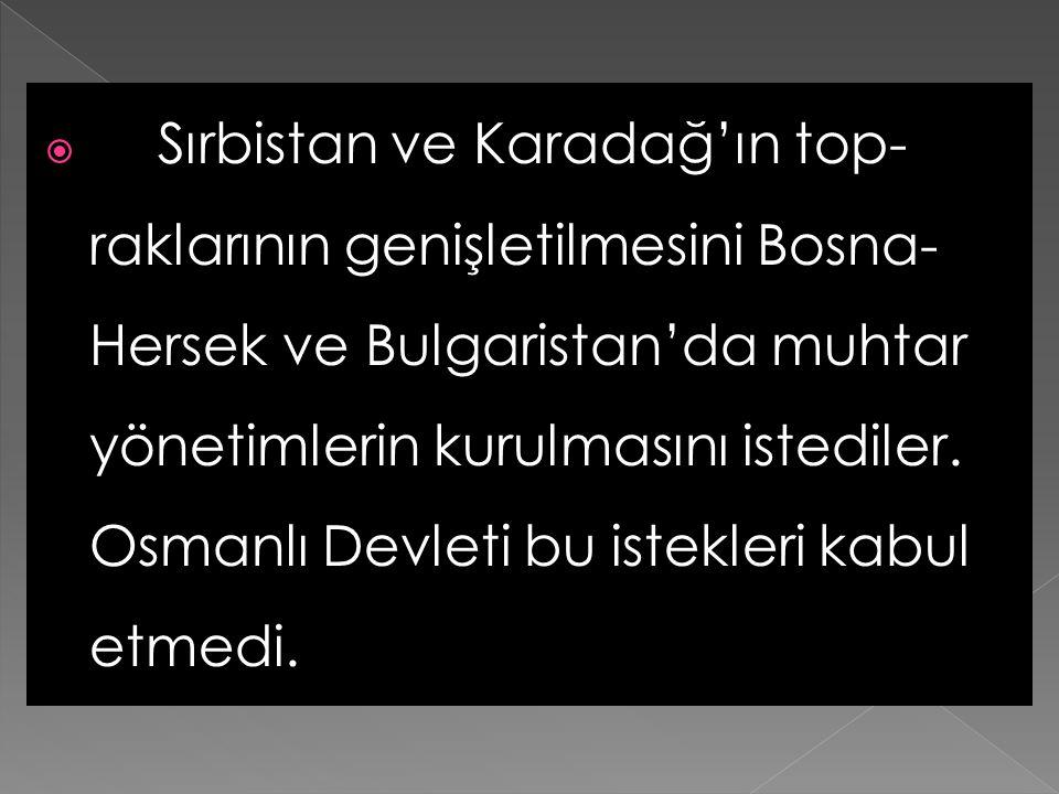 1876'da İngiltere'nin isteği ile Balkan olaylarını görüşmek ve Osmanlı –Rus anlaşmazlığını gidermek için İstanbul'da bir konferans düzenlendi. Bu konf