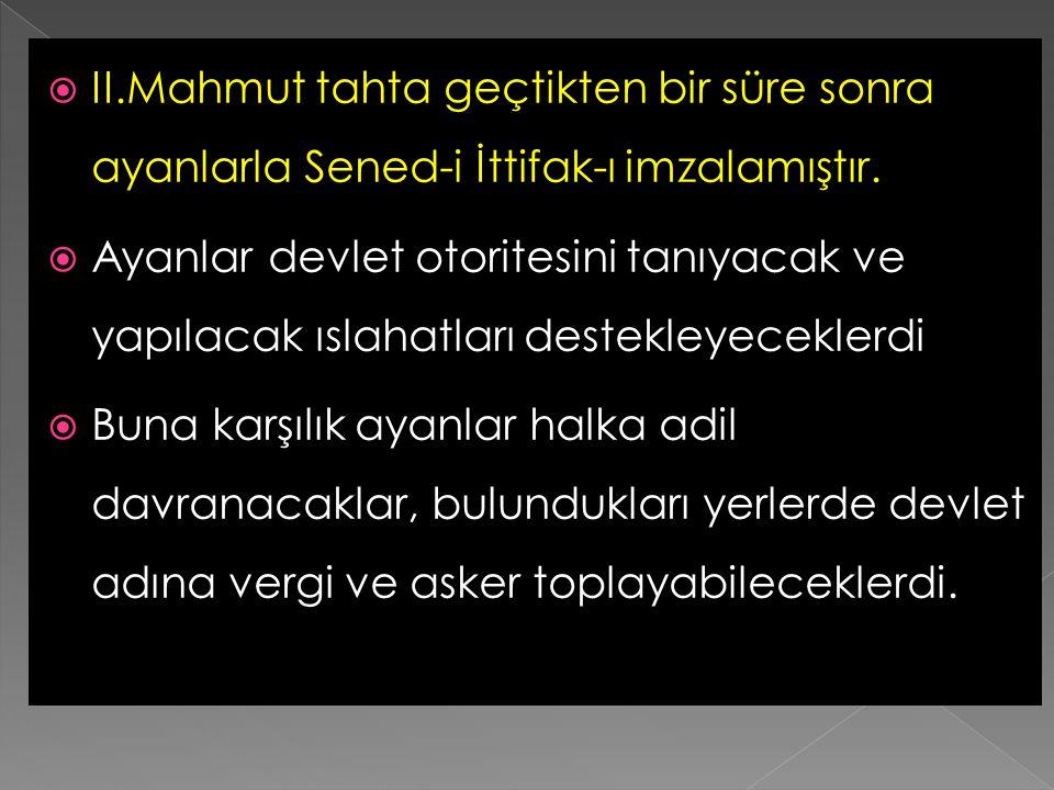  Osmanlı ordusunun,Rusya'ya karşı savaşmak üzere,Tuna boylarına hareket etmesinden sonra kısa bir sonra İstanbul'da Kabakçı Mustafa isyanı başladı.II
