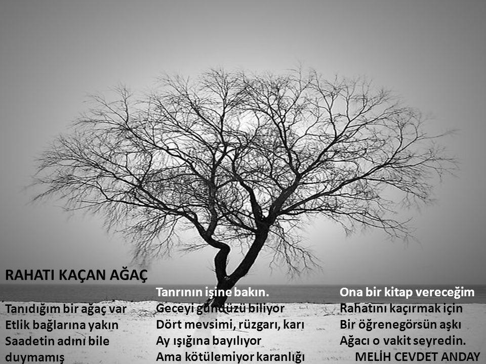 RAHATI KAÇAN AĞAÇ Tanıdığım bir ağaç var Etlik bağlarına yakın Saadetin adını bile duymamış Tanrının işine bakın. Geceyi gündüzü biliyor Dört mevsimi,