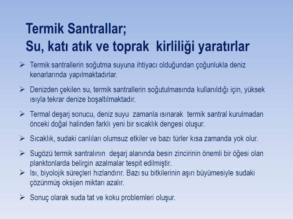 Çevre ve Şehircilik Bakanlığı yetkilileri bugünkü haliyle İskenderun Körfezi'nin Dilovası ve Aliağa'dan sonra Türkiye'nin 3.