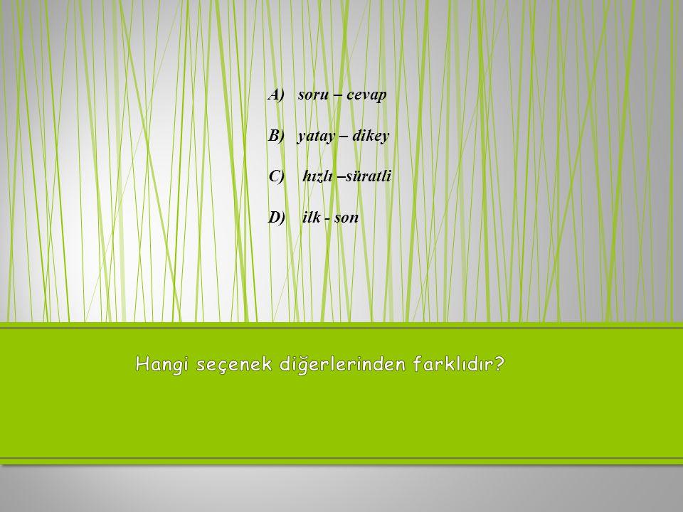 A) doğu-batı B) okul-mektep C) armağan – hediye D) mektup – name