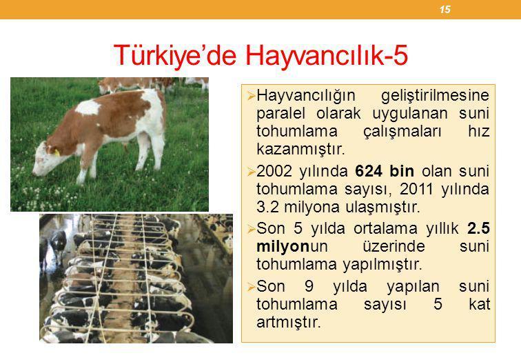 Türkiye'de Hayvancılık-5  Hayvancılığın geliştirilmesine paralel olarak uygulanan suni tohumlama çalışmaları hız kazanmıştır.  2002 yılında 624 bin