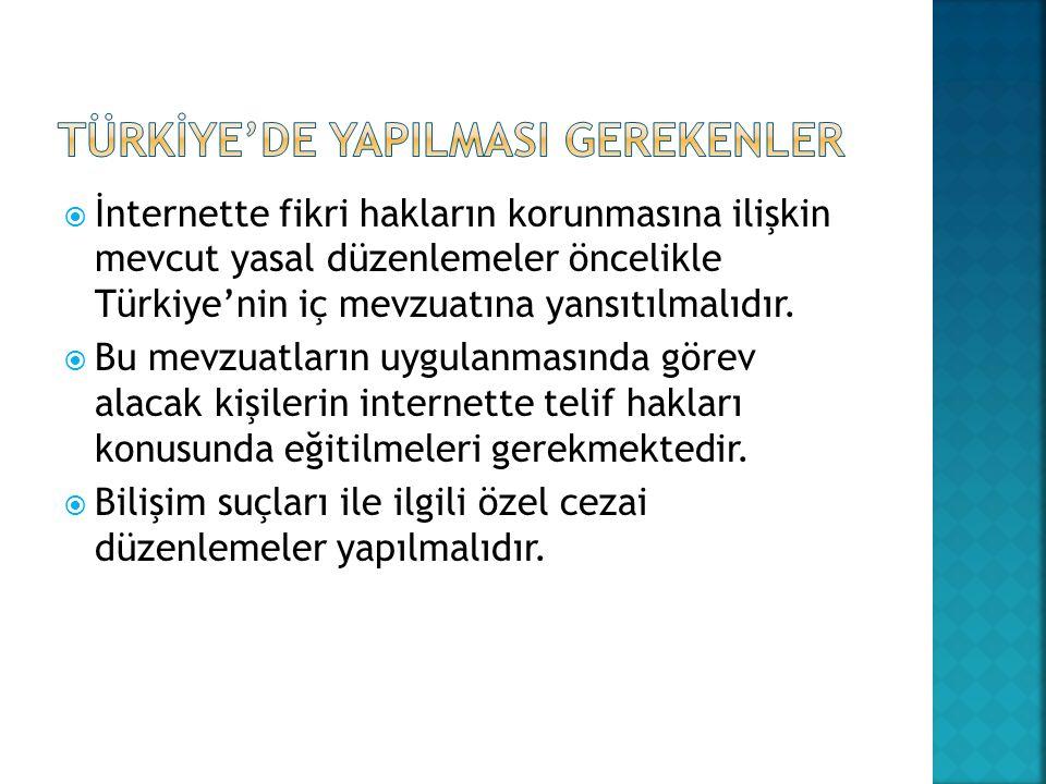  İnternette fikri hakların korunmasına ilişkin mevcut yasal düzenlemeler öncelikle Türkiye'nin iç mevzuatına yansıtılmalıdır.