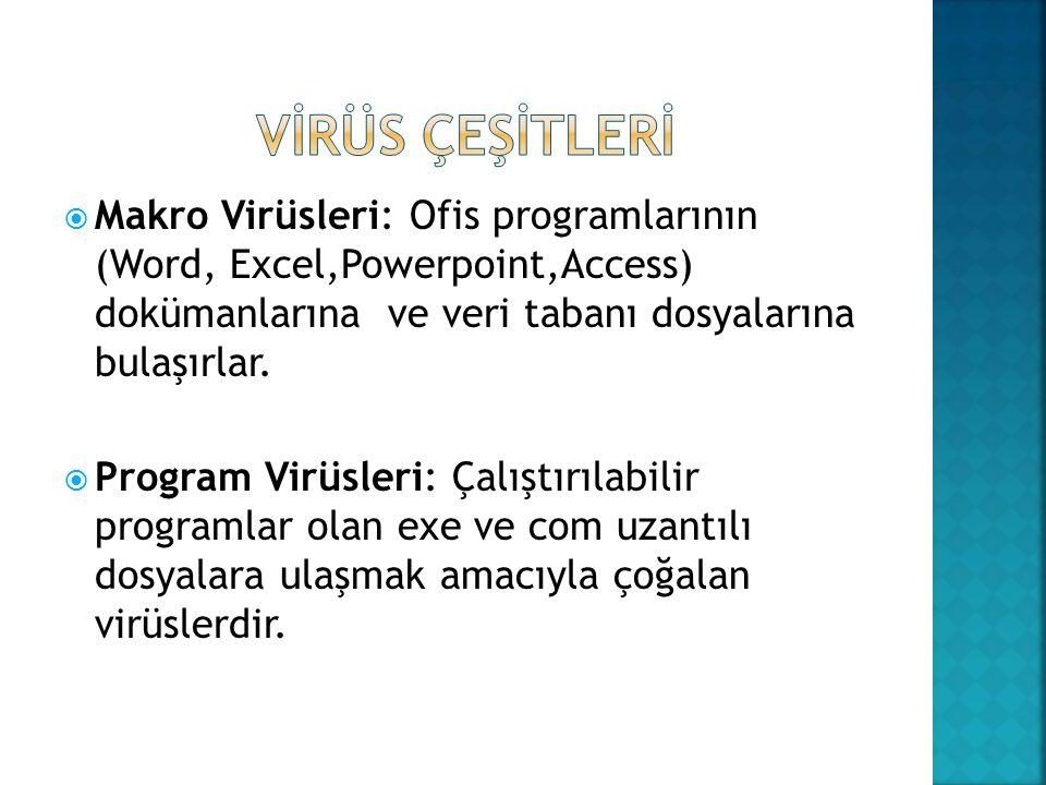  Makro Virüsleri: Ofis programlarının (Word, Excel,Powerpoint,Access) dokümanlarına ve veri tabanı dosyalarına bulaşırlar.