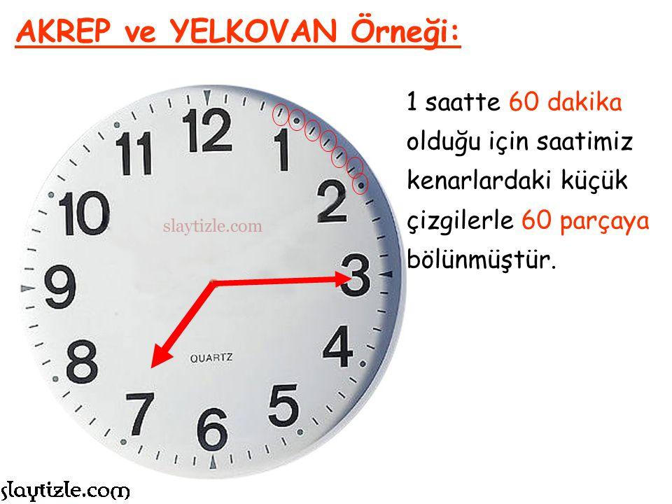 Saat 8 AKREP Örneği:
